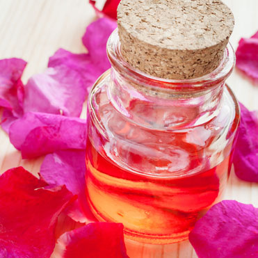 Rosehip OilRosa RubiginosaA potent, natural skin-aver, rich in essential fatty acids (EFS's), vitamin A and C.  Enhances the barrier function of the epidermis and helps keep skin supple