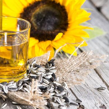 Sunflower OilHelianthus AnnuusRich in vitamin E and omega 6 essential fatty acids